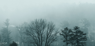 Sean Pinto photoGRAPHY - Smoky Mountains - early morning mist
