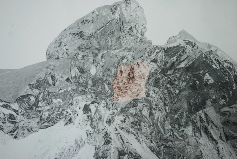 Pedro Wainer - 50 x 60 cm. Exposición directa sobre gelatina de plata, virado al cobre. Impresión Única. (2012)