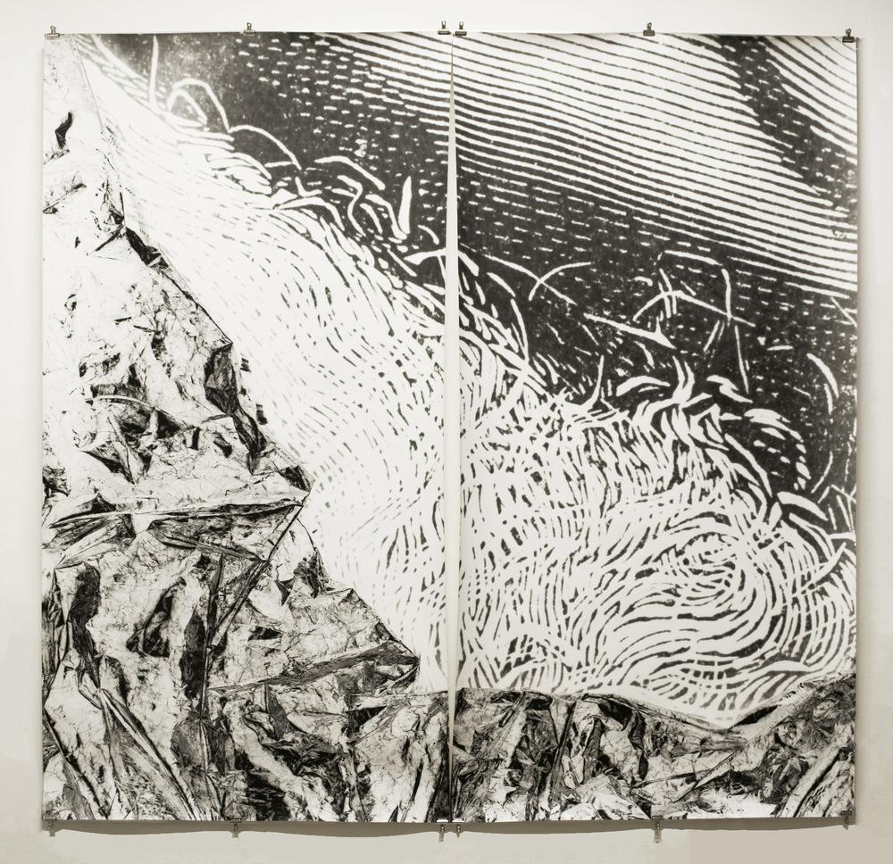 Pedro Wainer - Desentierros #2. Barba 207 x 215 cm. Exposición directa sobre gelatina de plata, copia única. (2017)