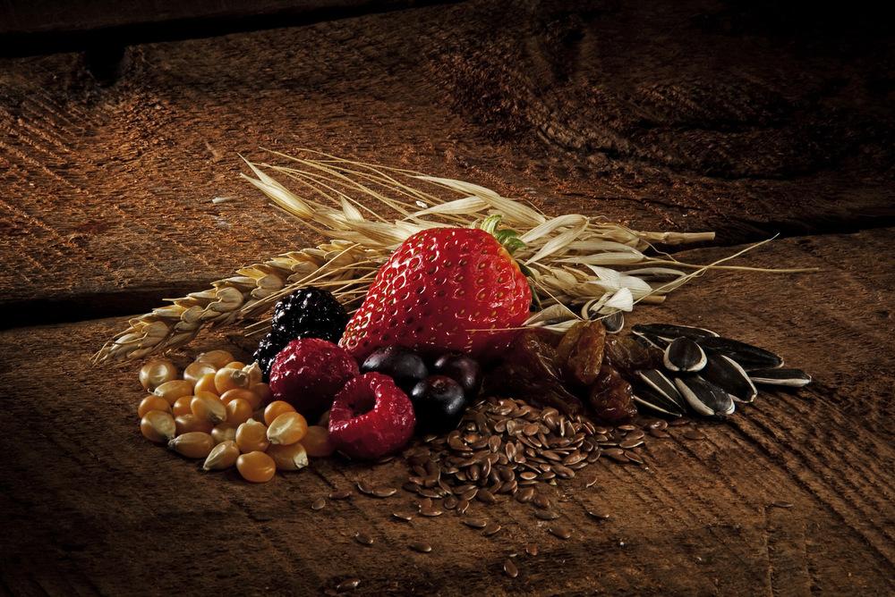 Patricio  Jara Cervantes - Alimentos